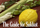 The Guide for Sukkot