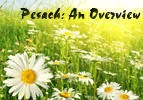Pesach: An Overview