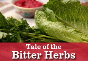 Tale of the Bitter Herbs