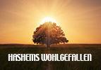 HaShems Wohlgefallen