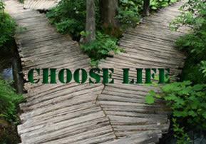 Nitzavim - Vayelech: Choose Life