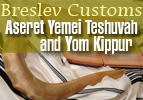 Breslov Customs