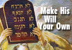 Make His Will Your Own -Vezot HaBerachah