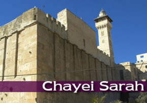 Chayei Sarah: Creating Our Own Selves