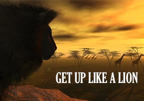 Get up like a Lion