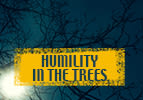 Humility in the Trees