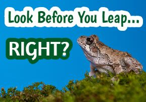 Look Before You Leap..Right? - Mishpatim