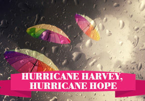 Hurricane Harvey, Hurricane Hope