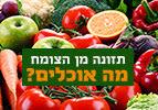תזונה מן הצומח, מה אוכלים?