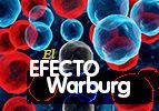 El efecto Warburg