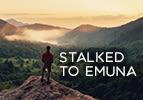 Stalked to Emuna