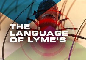 The Language of Lyme's Disease - Part 2