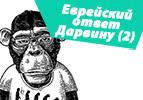 Еврейский ответ Дарвину (2)