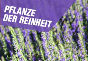 Pflanze der Reinheit