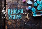 Emor: The Hidden Praise