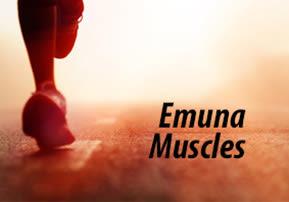 Emuna Muscles