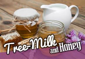 Recipe: Land of Tree Milk and Honey