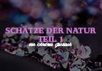 Schätze der Natur (1)
