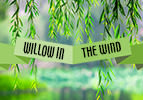 Willow in the Wind