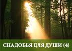 Снадобья для души (4)