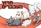 מרוץ העכברים