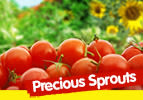 Precious Sprouts