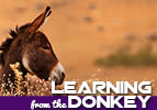 Balak: Learning from the Donkey