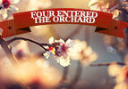 Four Entered the Orchard