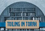 Bechukotai: Toiling in Torah