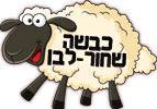 כבשה שחור-לבן