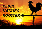 Rebbe Natan
