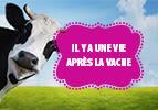 Il y a une vie après la vache