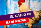 El Gallo de Rabi Natan