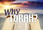 Why Torah?