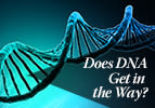 Does DNA Get in the Way?