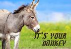 It's Your Donkey