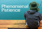 Balak: Phenomenal Patience