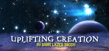 Noach: Uplifting Creation