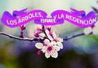 Los Árboles, Israel y la Redención