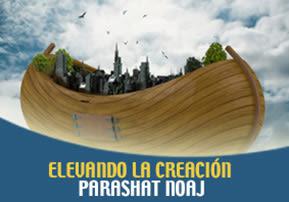 Elevando la Creación – Parashat Noaj