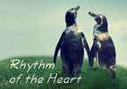 Shabbat HaChodesh: Rhythm of the Heart