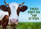 הסוד הכמוס של הפרה