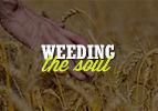 Chayei Sarah: Weeding the Soul
