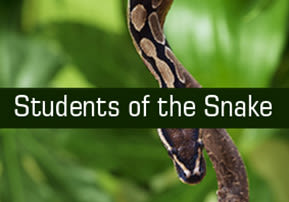 Students of the Snake