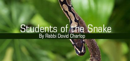 Chukat: Students of the Snake