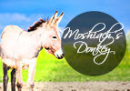 Moshiach's Donkey