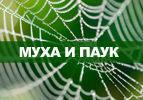 Муха и паук