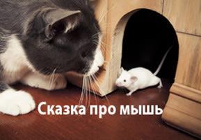Сказка про мышь