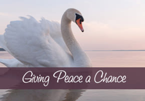 Giving Peace a Chance