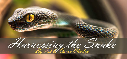 Harnessing the Snake